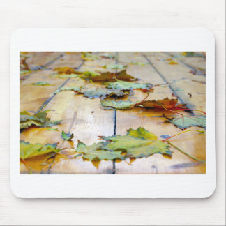 Selective focus on the autumn fallen maple leaves mouse pad
