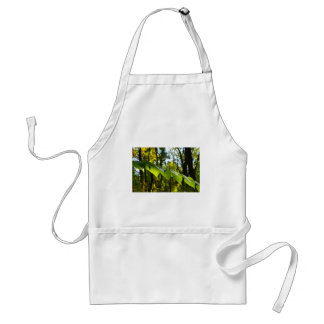 Selective focus on the branch of a tree with large adult apron