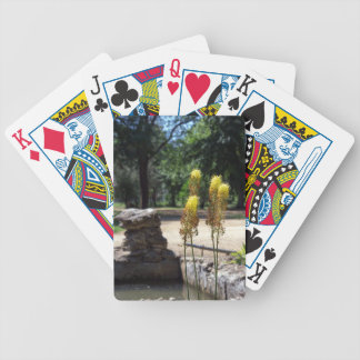 Selective focus on the yellow plants in the foregr bicycle playing cards