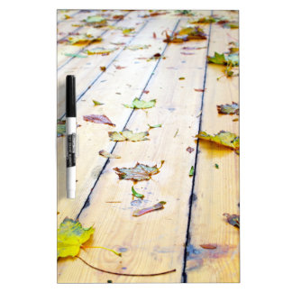 Selective focus on wet fallen autumn maple leaves Dry-Erase board