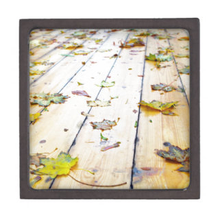 Selective focus on wet fallen autumn maple leaves gift box