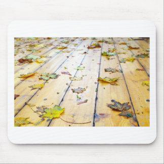 Selective focus on wet fallen autumn maple leaves mouse pad