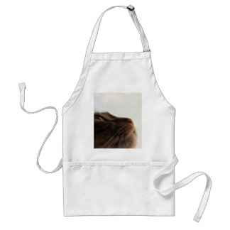 self-identity adult apron