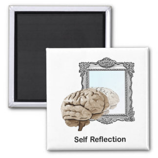 Self Reflection Magnet