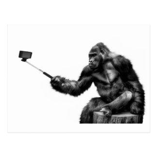 selfie stick postcard