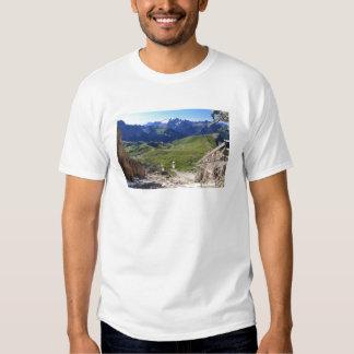 Sella pass from Sassolungo mount Shirts