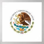 Selle al gobierno México, México Poster
