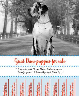 puppy flyers zazzle