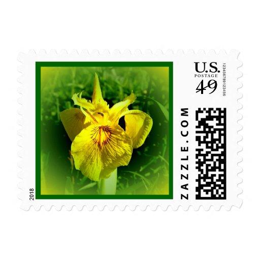 Sello #1 de USPS de la flor