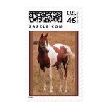 Sello #1 de USPS del caballo del Pinto