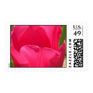 sello 2009-1035