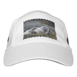 Sello adorable gorras de alto rendimiento