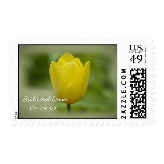 Sello amarillo del boda del tulipán