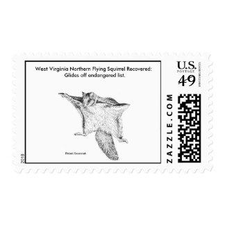 Sello/ardilla de vuelo septentrional de Virginia O Sello