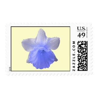 Sello azul de los E.E.U.U. del narciso del goteo