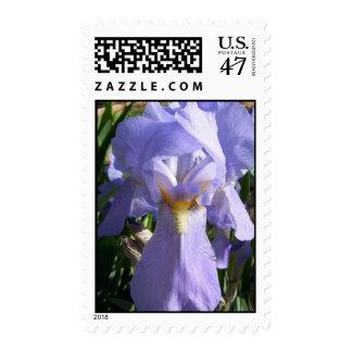 Sello azul del iris