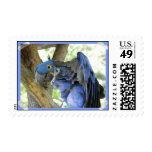 Sello azul del Macaw