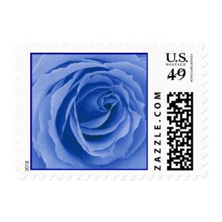 Sello azul del rosa