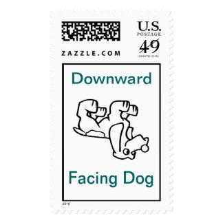 Sello boca abajo del perro