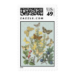 Sello botánico de las mariposas del vintage…
