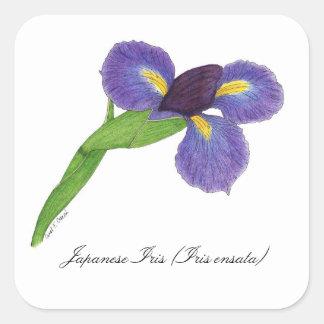 Sello botánico del flor del iris japonés pegatina cuadrada