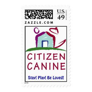 Sello canino del logotipo del ciudadano