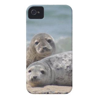 Sello Case-Mate iPhone 4 Coberturas