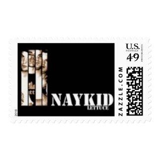 Sello CD del logotipo de Naykid