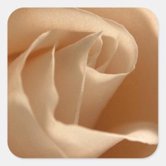 Sello color de rosa color nata rústico del sobre pegatina cuadrada