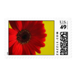 Sello con flor roja postage stamps
