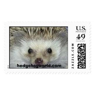 sello de hedgehogworld.com