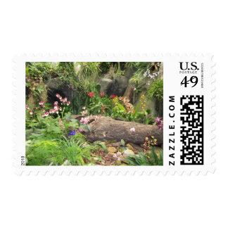 Sello de la flor de la selva tropical