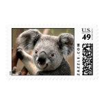 Sello de la koala