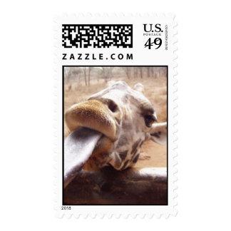 Sello de la lengua de la jirafa