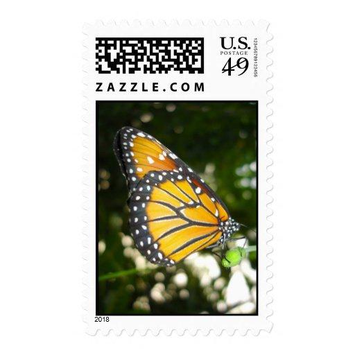 Sello de la mariposa de monarca