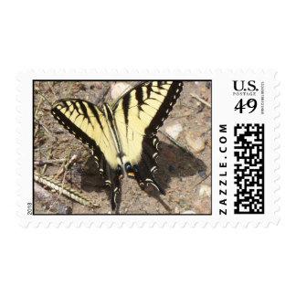 Sello de la mariposa