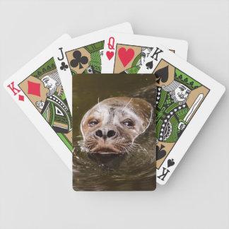 Sello de la natación cartas de juego