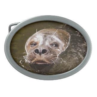 Sello de la natación hebillas de cinturón ovales