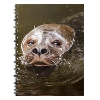 Sello de la natación libro de apuntes con espiral