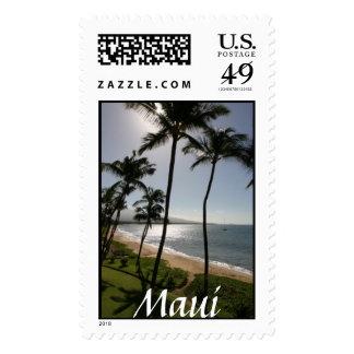 Sello de la playa de Maui