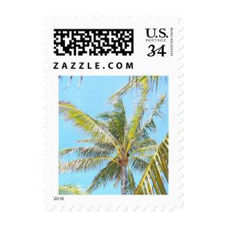 Sello de la postal de la palmera