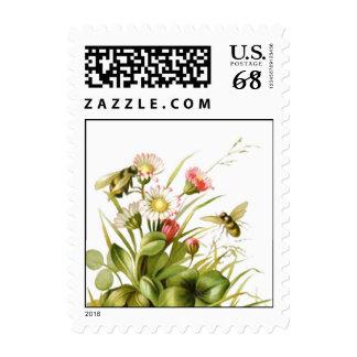 Sello de las ilustraciones de la flor del vintage