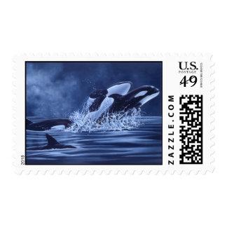 Sello de las orcas