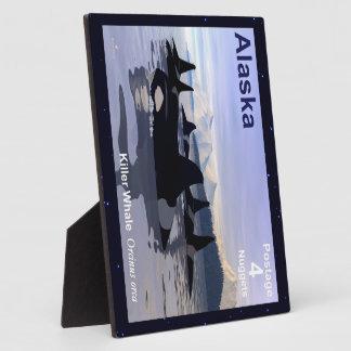 Sello de las orcas de Alaska Placas Con Fotos
