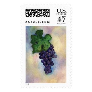 Sello de las uvas de vino rojo de