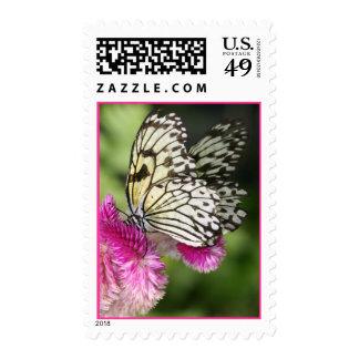 Sello de los besos de las mariposas
