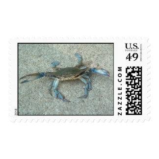 Sello de los cangrejos azules de Maryland