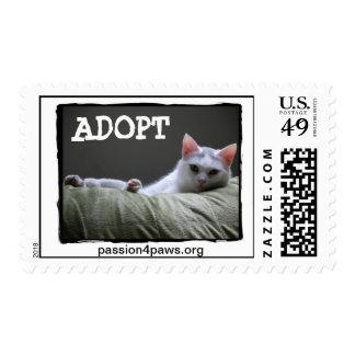 Sello de los E.E.U.U. - ADOPTE - gato blanco