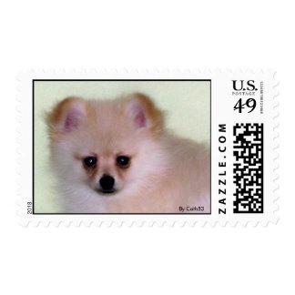 Sello de Pomeranian Por Cath53
