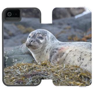 Sello de puerto adorable funda cartera para iPhone 5 watson